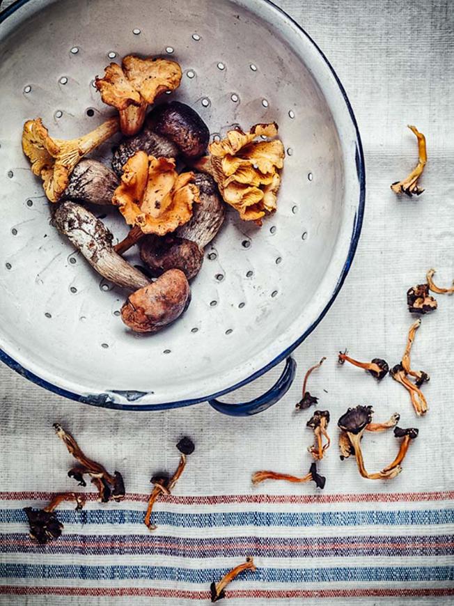 risotto al fungi